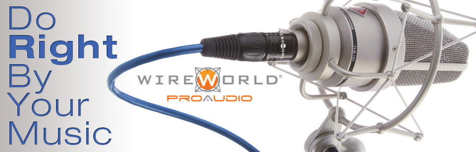 wireworld proaudio mic